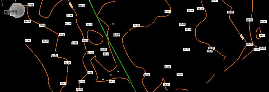Пример подеревной топографической съемки