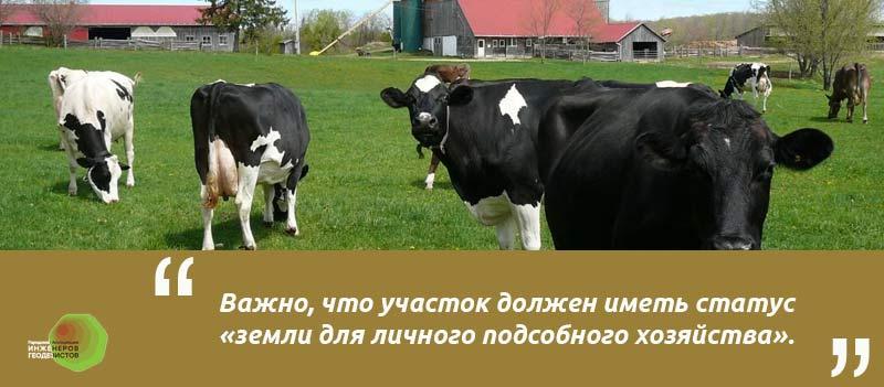 Илюстрация к статье формление ЛПХ земли в собственность документы. огород лпх